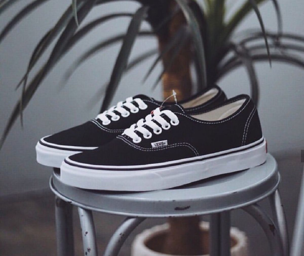 Vans Authentic Zwart Dames Heren Vn0a3479a6o 4