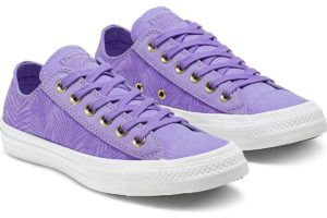 converse-all starslaag-dames-paars-564114c-paarse-sneakers-dames