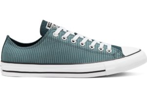 converse-all stars laag-dames-blauw-166867c-blauwe-sneakers-dames