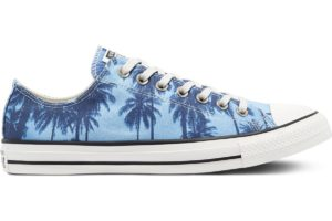 converse-all stars laag-dames-blauw-171299c-blauwe-sneakers-dames